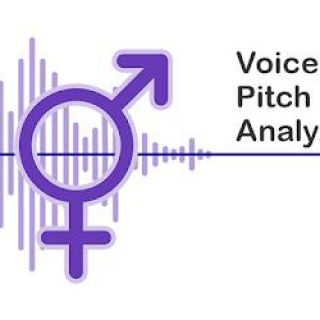 voice pitch analytic